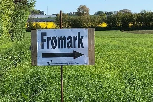 Kommunen slår specielle grøftekanter