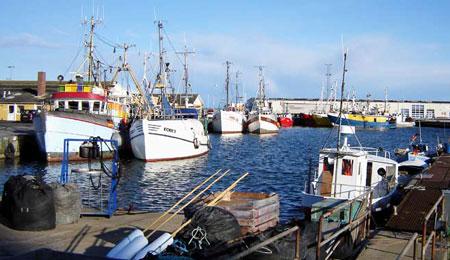 Bornholm Fisk A/S tilført 1 mio. kr. i kapital