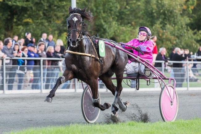 God præstation af Betina Lunds hest i Sverige