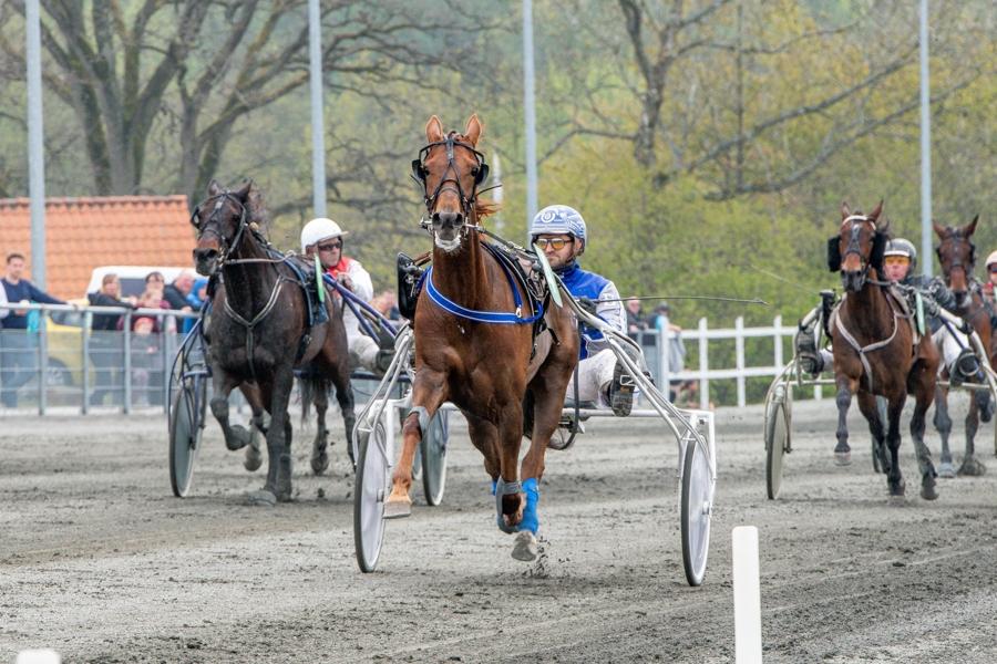 Fire heste udgået til dagens travløb