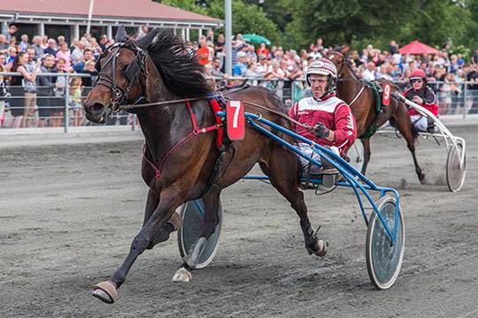 Frank Mikkelsens hest udenfor pengene i Sverige