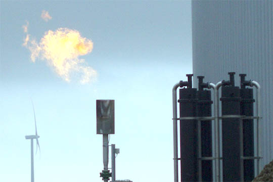 Overskud i Bornholms Bioenergi ApS