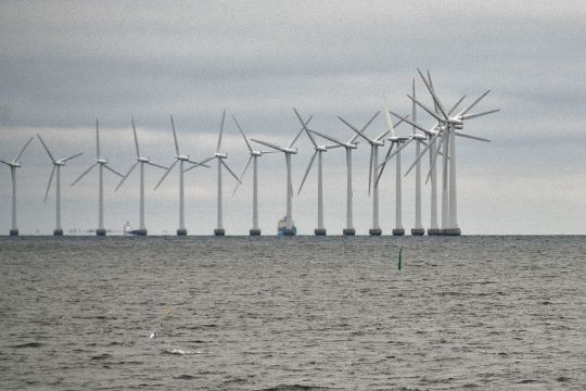 Bornholm bør hurtigt med på nyt elnet