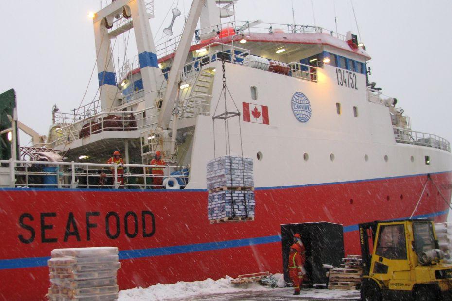 Ocean Prawns tjente 55 mio. kr. efter skat