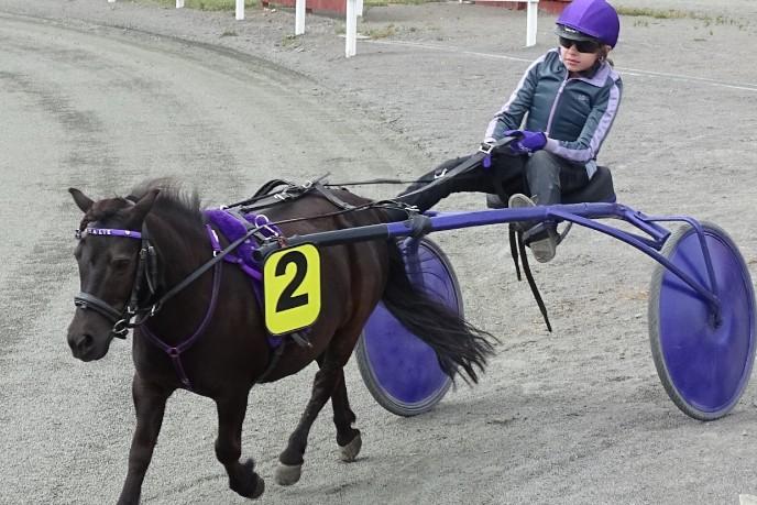 Ponykusk fik præmie for at hjælpe konkurrent