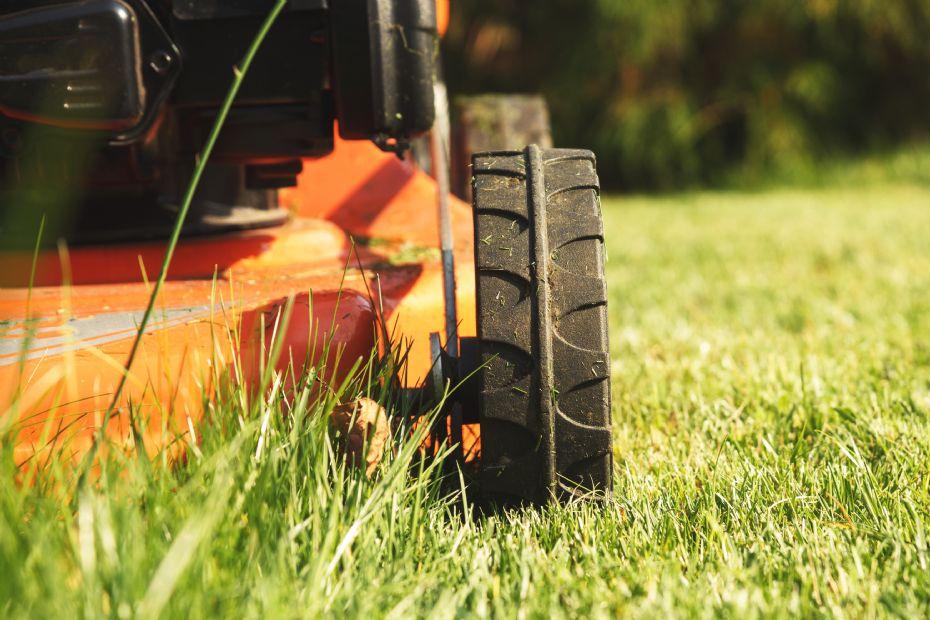 Private må klippe højt græs ved indkørsler