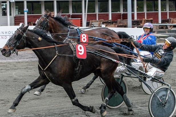 17 heste kæmper om plads ved BM-trav