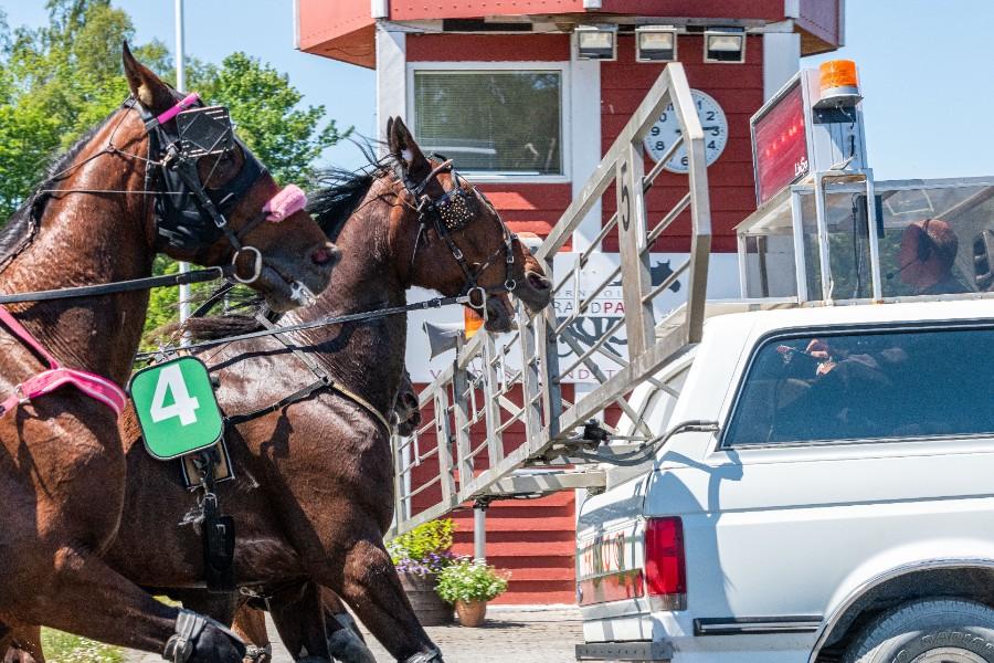 Tre heste afgørende i front i Golden League